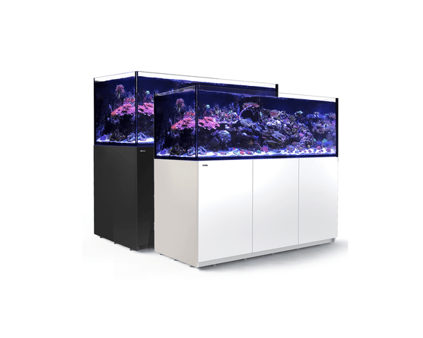 REEFER XXL 750 Aquarium Set (180L x 65W x 148H cm) - Red Sea - PetStore.ae