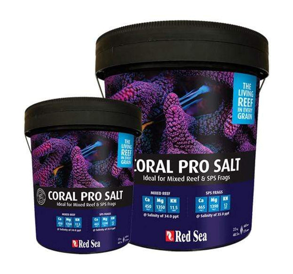 Coral Pro Salt - Red Sea - PetStore.ae