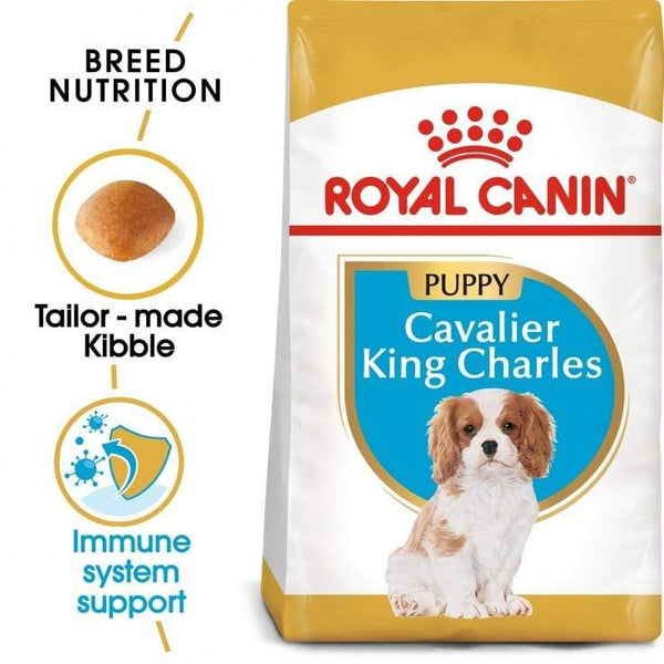 Cavalier King Charles Puppy Dog Food - Royal Canin - PetStore.ae