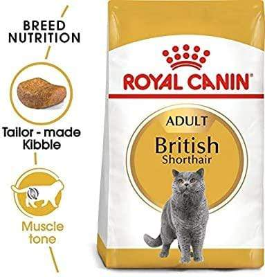 Feline Breed Nutrition British Shorthair Adult Cat Food - Royal Canin - PetStore.ae
