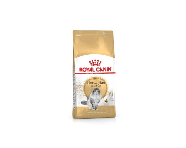 Feline Breed Nutrition Norwegian Forest Cat Food - Royal Canin - PetStore.ae