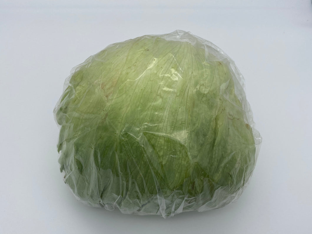 Iceberg Lettuce English
