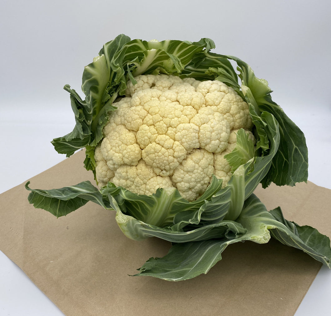 Cauliflower XL