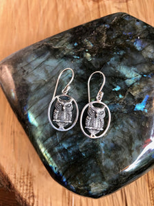 Sterling Silver Earrings Owl