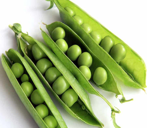 English Peas in Pods