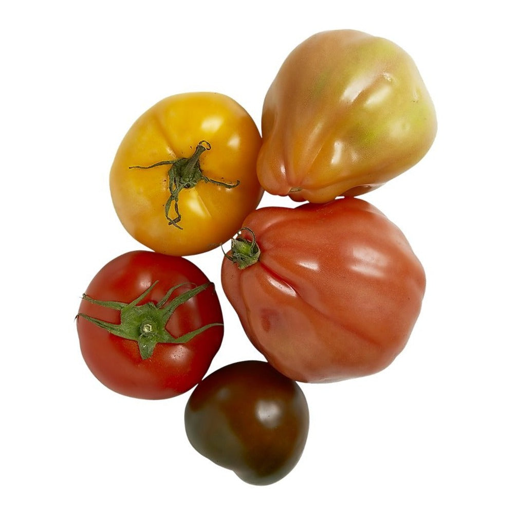 Heirloom Tomato Large