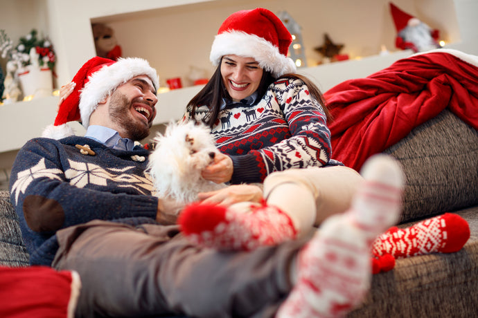 Fun Ways to Celebrate the Holidays With Your Pets