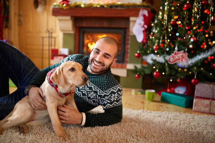 How to Choose the Right Toys for Your Dog for Christmas