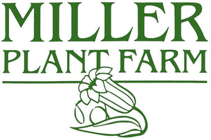 Miller Plant Farm York PA Garden Center Market