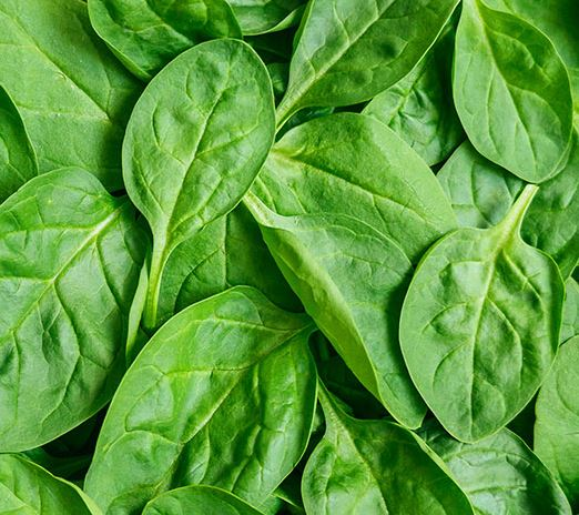 SPINACH BAG 200g - DeGusta Grocery Home Delivery