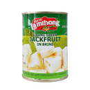 JACKFRUIT IN SALTED WATER 565g