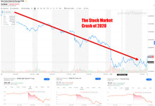 Load image into Gallery viewer, Surviving A Stock Market Crash Course