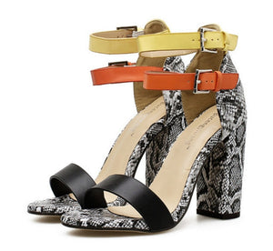 Special Offer Torridity  Heels Fashion