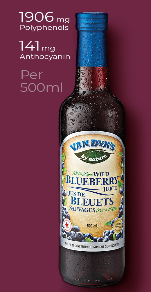 A bottle of Van Dyk's 100% Wild Blueberry Juice with the following stats next to it, 1906mg polyphenols, 141mg anthocyanins, per 500ml serving'.'