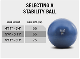 Everlast FIT Exercise Balls - Click to Select Size