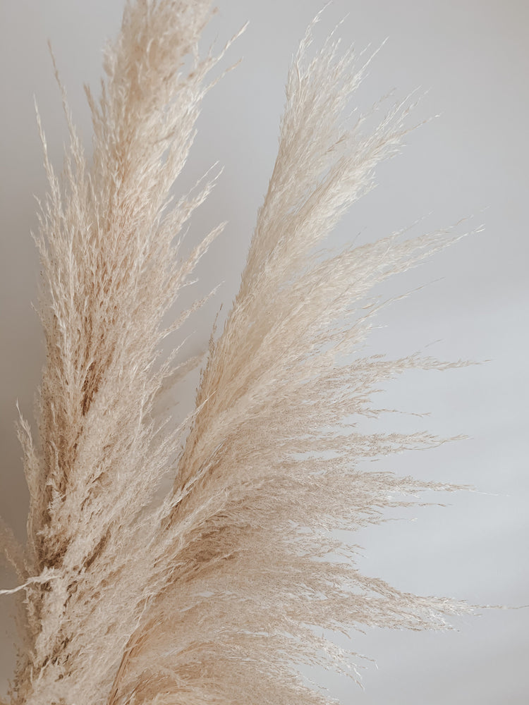 Load image into Gallery viewer, Golden Hour Pampas - Golden August