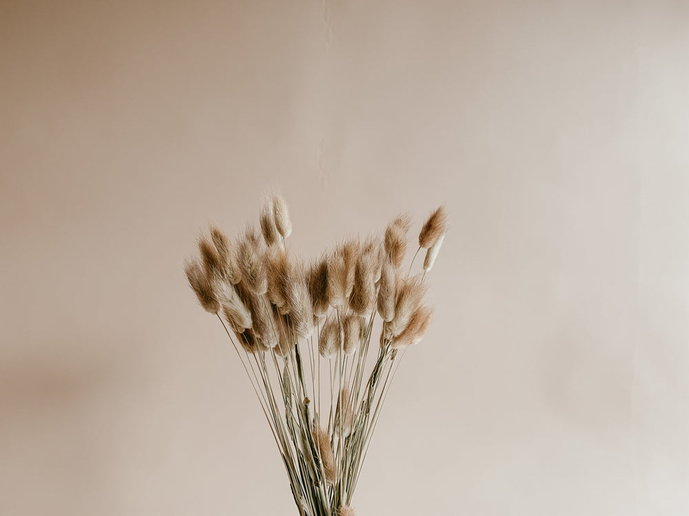 Load image into Gallery viewer, PREORDER - Natural Bunny Tails - Golden August