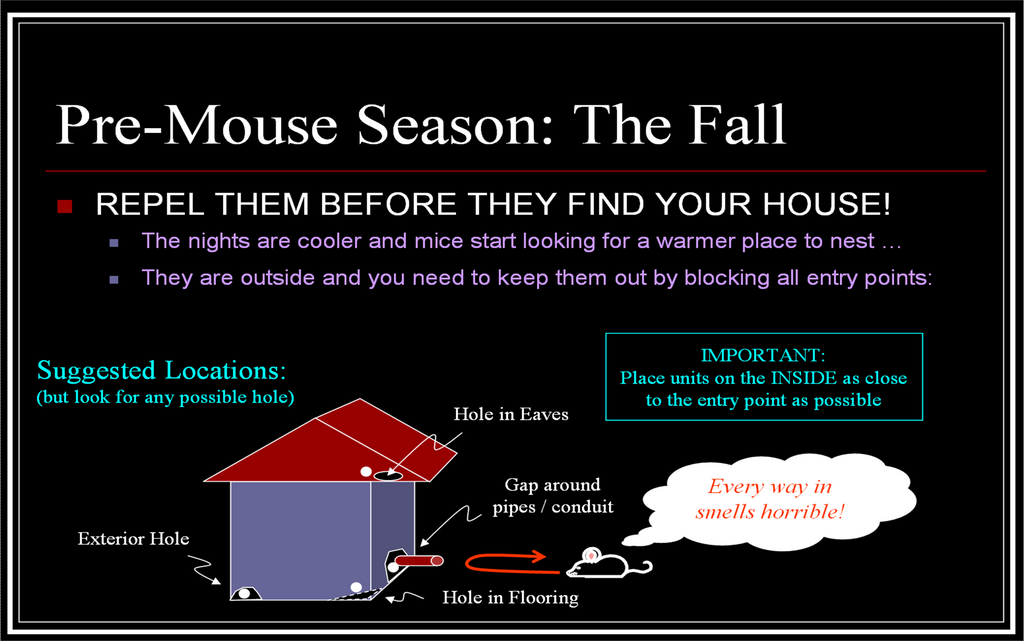 No Mouse in the House Long Lasting All Natural Mouse Repellent Fall Strategy Peppermint Oil Mouse Ball