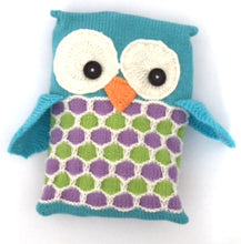 Load image into Gallery viewer, Pyjama Party Owl PJ Case