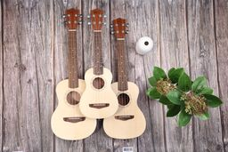 How to Choose the Right Ukulele for You!