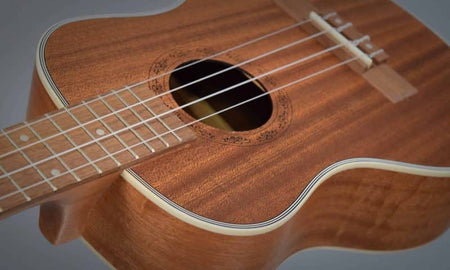 Hricane Ukulele Review (2020 Edition) by Sean R.