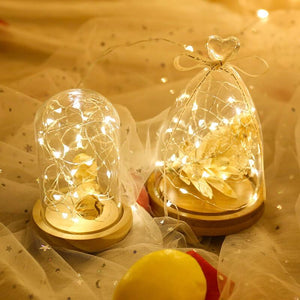 1M/2M/3M DIY String Lights Decorations (USB)