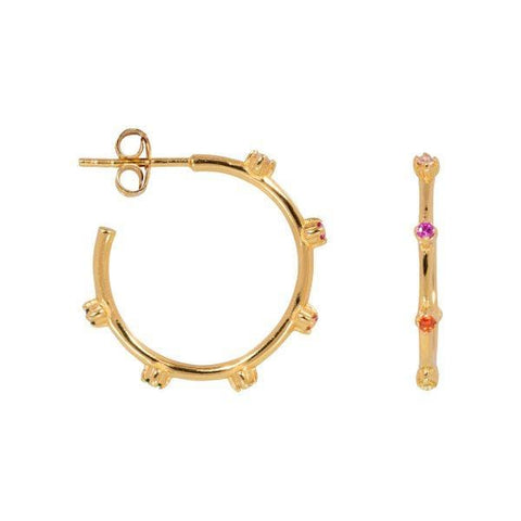 Trendjuwelier Bemelmans - Eline Rosina Over The Rainbow Hoops In Gold Plated Sterling Silver