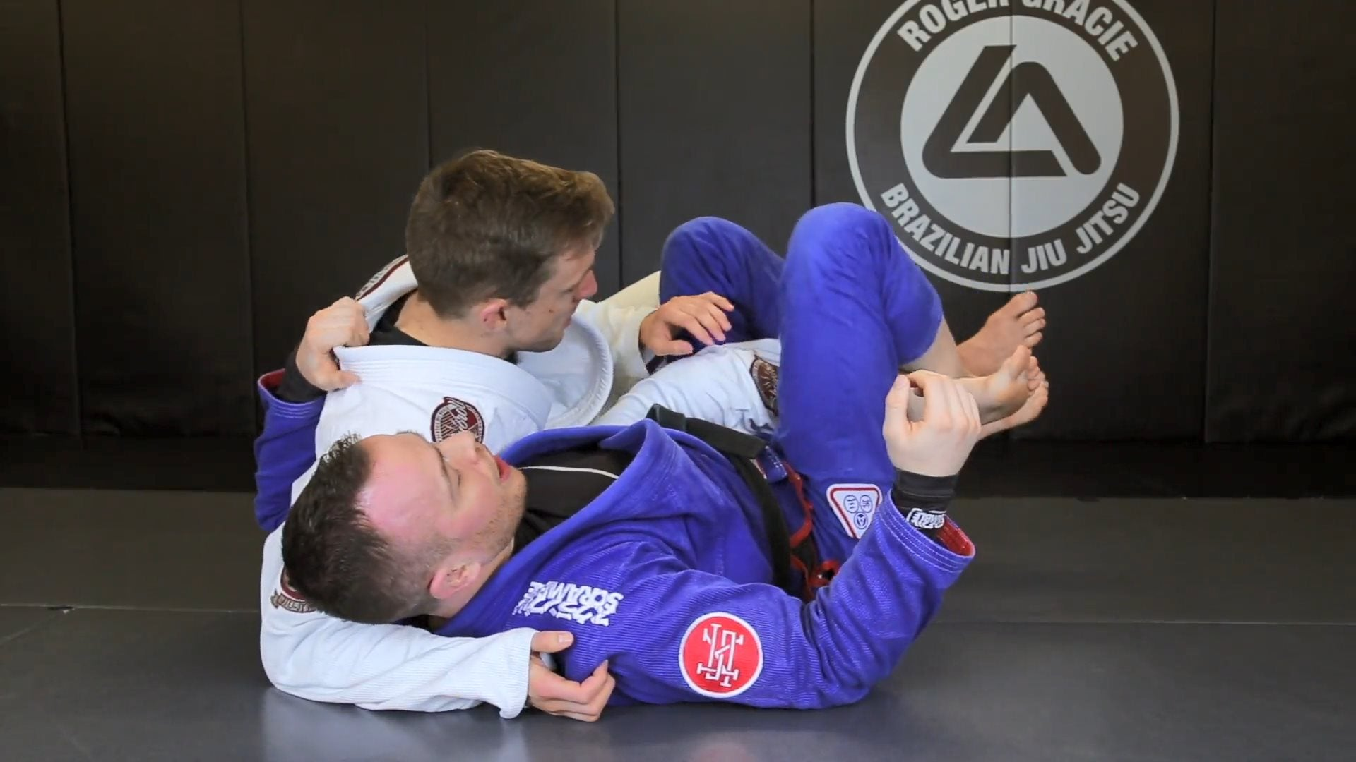 Half Guard Mastery - Digital Download