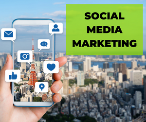 SOCIAL MEDIA MARKETING - MONTHLY FEE