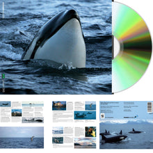 Load image into Gallery viewer, CD & Booklet: Marine Mammals and Fish of Lofoten and Vesterålen