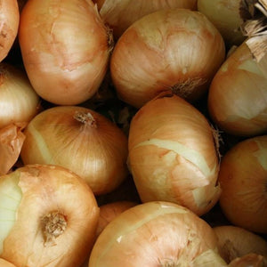 Onion Brown p/p 10kg