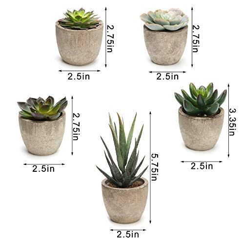 690GRAND Artificial Succulent Plants with Faux Greenery and Plastic Mini Pots for Home Decor Set of 5