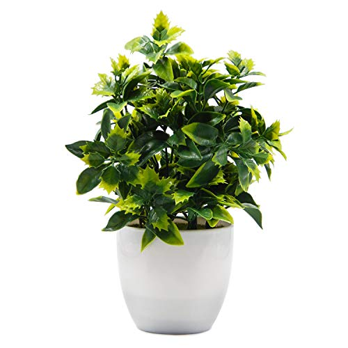 OFFIDIX Artificial Plastic Mini Plants in White Pot,Desk Plant Artificial Flowers with Vase,Small Faux Plastic Plants for Home Kitchen Garden Office Indoor Decor