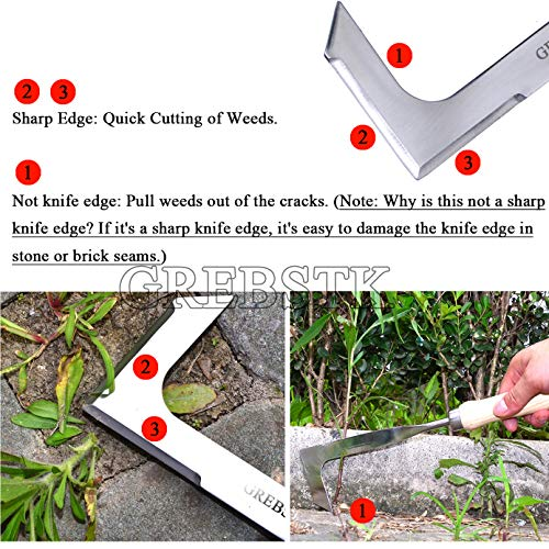 Weed Snatcher Crevice Weeding Tool Crack Weeder Beech Handle Stainless Steel Lawn Yard Gardening Tool