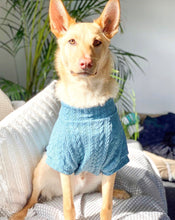 Load image into Gallery viewer, Dog Jumper - Teal Cable