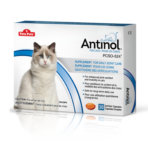 Antinol® pour chats