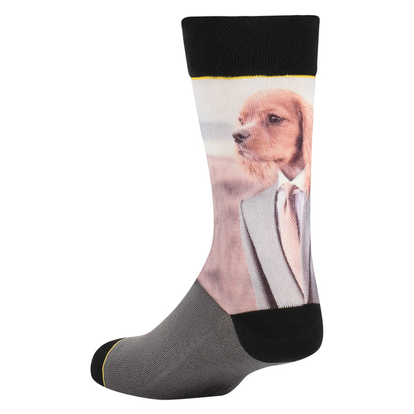 Sock My Dog
