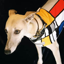 Load image into Gallery viewer, Mondrian Reflective Dog Vest