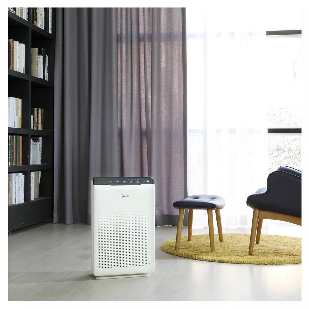 Air Purifier Winix Living Room