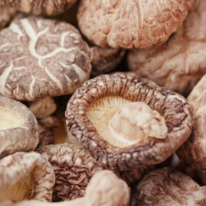 You never knew this about mushrooms