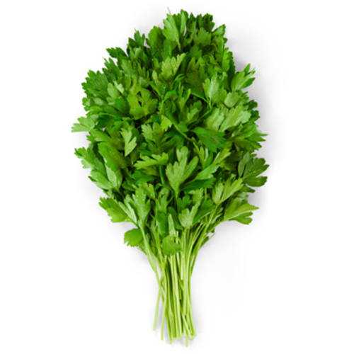 Italian Parsley, bunch