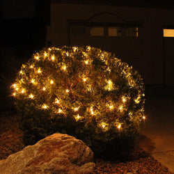 2x 100 Incandescent Christmas Net Lights, Warm White