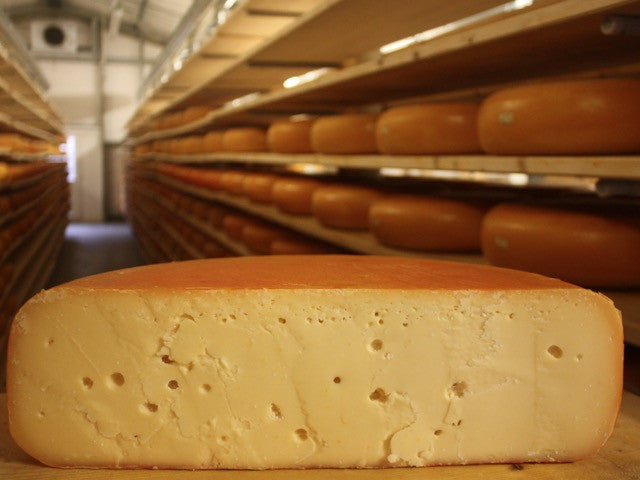 Cornish Mature Gouda