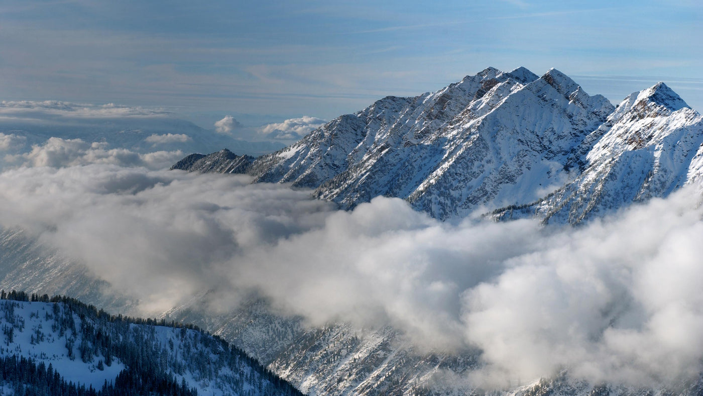 The View From Snowbird Ski Resort - Little Cottonwood Canyon