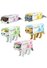 Load image into Gallery viewer, Tissue cat blind box