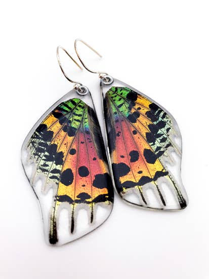Sunset moth earrings