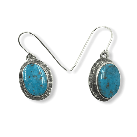 Image of Navajo Kingman Turquoise Hook Earrings