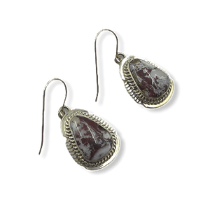 Navajo Wild Horse Hook Earrings