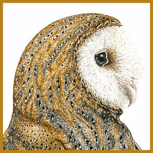Natalie Toms - Wildlife Art