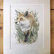 Load image into Gallery viewer, 'Prowling Fox' Giclée print